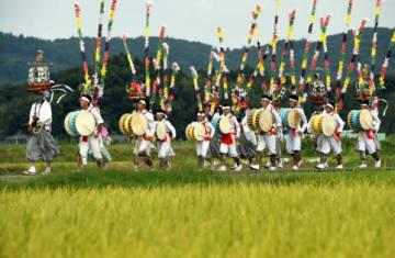 鮮やかな衣装で、黄金色の田んぼの中を練り歩く踊り手たち=いちき串木野市大里