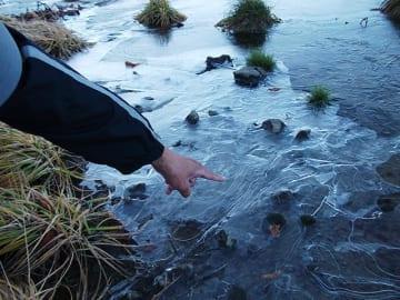 鶴ケ池で観測された初氷=23日午前、高山市丹生川町、乗鞍岳・畳平(乗鞍スカイライン管理事務所提供)