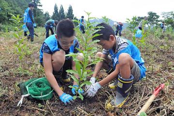 広葉樹の苗木を植えていく参加者=23日、三朝町東小鹿