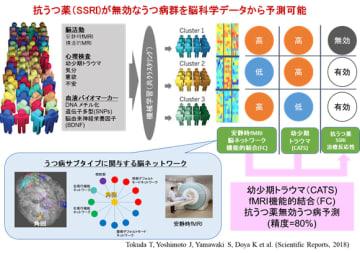 研究の概要。(画像:奈良先端科学技術大学院大学発表資料より)
