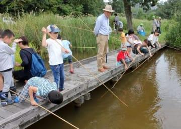 アメリカザリガニ釣りに挑戦する子どもたち=24日、上越市頸城区