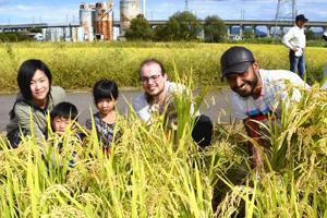 「摺上川」の酒米収穫 飯坂温泉地酒をつくる会、外国人も参加