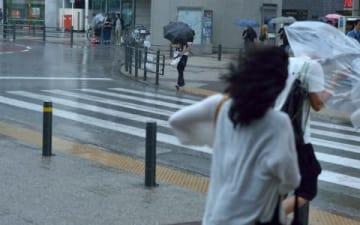"""近年の台風は、なぜ""""勢いが強いまま""""やってくるのか?"""