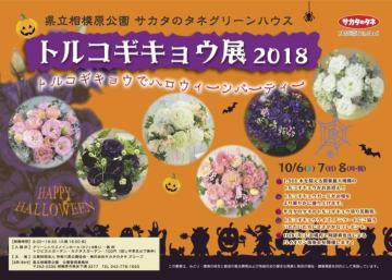 関東随一の展示規模!トルコギキョウでハロウィンパーティー@神奈川県立相模原公園