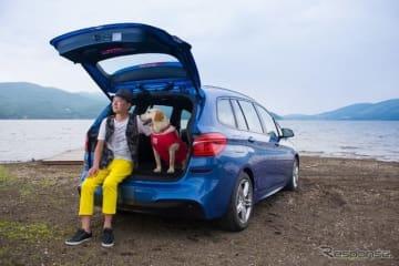 【青山尚暉のわんダフルカーライフ】ドッグフレンドリーカーに必要な装備、機能は?