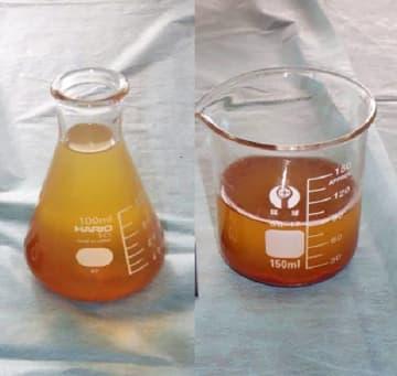 逮捕された大学1年の少年が製造したとみられる、液体に溶けた状態で保存されていた覚醒剤(愛知県警提供)
