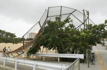 台風24号の影響により、中学校の運動場で倒れたバックネット=30日午前、沖縄県南風原町