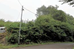 落雷で故障した電波増幅器。一部世帯でテレビが視聴できなくなり、復旧に多額の費用がかかった=宮城県栗原市
