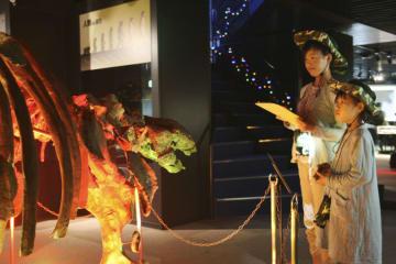 Night museum program in Japan