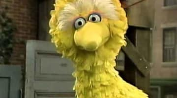 Big Bird on 'Sesame Street'