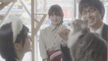 映画「猫カフェ」の場面写真 (C)2018「猫カフェ」製作委員会
