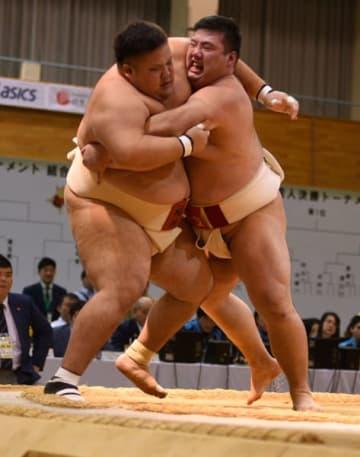 【相撲成年男子個人決勝で城山(三重)が押し出しで宮下(福井)を下す=福井県大野市で】