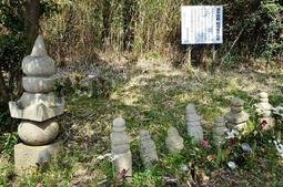 茂みにひっそりと並ぶ源平塚。地元の女性が毎月、供養に足を運んでいる=神戸市垂水区塩屋町