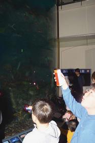 高さ9メートルの巨大な水槽を泳ぐ魚の夜の生態に興味津々な親子ら