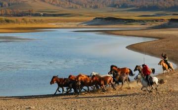 牧歌が響きわたる見渡す限りの大草原 内モンゴル自治区