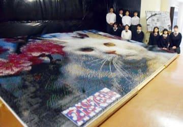 完成までに半年を要した猫の巨大アート=千葉県立我孫子東高校