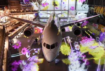 """Flight of Dreams"""