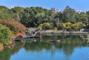爽やかな秋の1日、自然を求めて出かけよう 吉林省長春