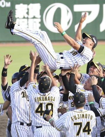 12年ぶり5度目の優勝を果たし、胴上げされる阪神・矢野監督=サンマリン宮崎