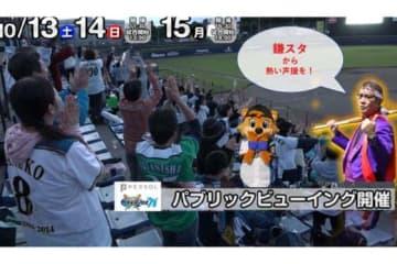 13~15日に鎌ケ谷スタジアムでパブリックビューイングを開催【写真提供:北海道日本ハムファイターズ】