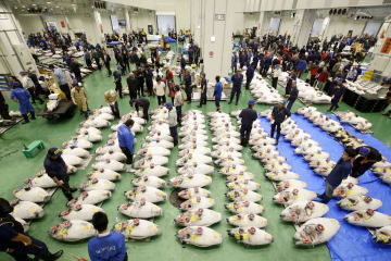 Opening of Toyosu fish market