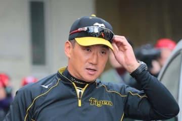 退任が決まった阪神・金本監督【写真:荒川祐史】