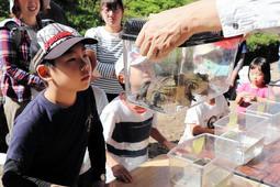 ため池で見つかったウシガエルを観察する子どもたち=篠山市岩崎
