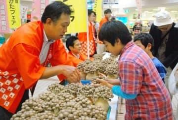 県産の多彩なキノコを販売しPRしたイベント=14日、新潟市西区