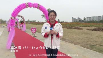 17組がヘリの中で空中結婚式!江西省