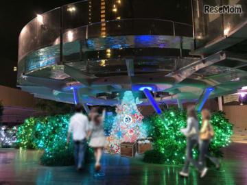 サンシャイン水族館 クリスマスツリー(イメージ)
