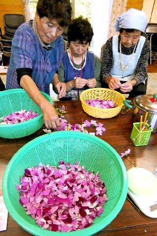 コスモスが朝倉を支える ドレッシングの材料に 宮園集落の女性グループが製造 [福岡県]