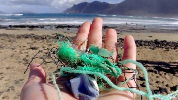 米ジョージア大のチームがスペイン・カナリア諸島の海岸で拾ったプラスチックごみ=2014年11月(ジョージア大提供)