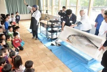 50キロのマグロ…大きい! 東根・保育所で「魚屋さんの出前講座」