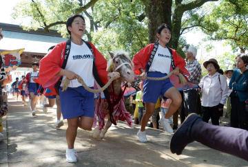 ポニーとともに宮原三神宮の参道を駆け抜ける中学生=氷川町