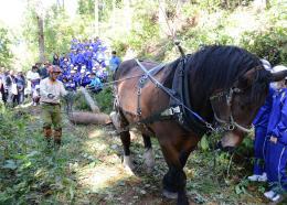 生徒たちの前で馬搬を実演する岩間さん