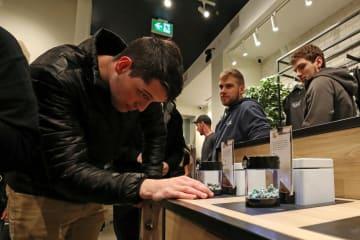 17日、小売店の店頭で大麻を見る男性=カナダ東部ニューファンドランド島(ロイター=共同)