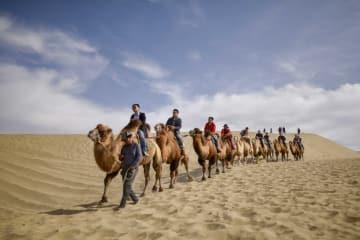 観光客を魅了、秋の新疆ロプノール県