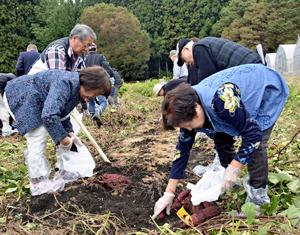 「竹パウダー農法」実感 塙で体験ツアー、東京から参加者