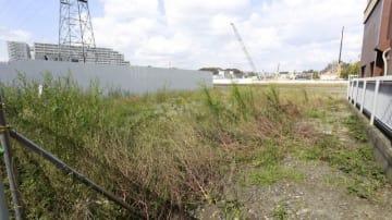 新しい小学校の建設用地。高圧電線が上空を通り、後背地では大規模マンション開発が進む=9日、横浜市港北区