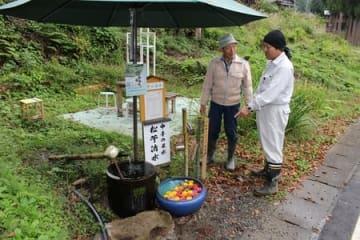 「新潟県の名水」に選ばれた「中手の松苧清水」=十日町市真田