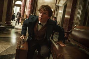 ファンタビが地上波に! - (C) 2018 Warner Bros. Entertainment Inc. Harry Potter and Fantastic Beasts Publishing Rights (C) JKR