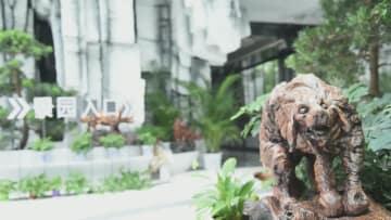 貴重な「石」を集めた博物館 甘粛省酒泉市