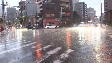 大気不安定 東京でもゲリラ雷雨 夜は都心でも可能性