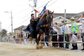 人馬一体で参道を疾走し、観客を沸かせた「さがり馬」=熊本市南区