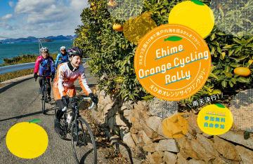 愛媛のかんきつ産地を周遊する「えひめオレンジサイクリング」開催