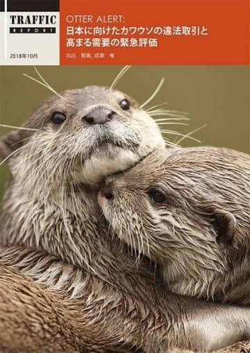 WWFジャパンが報告書を発表