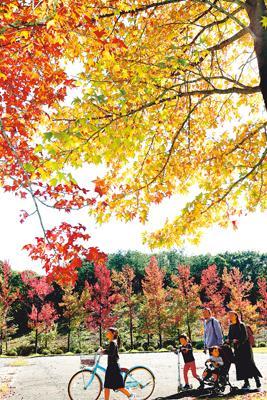 平野にも秋の色 23日霜降