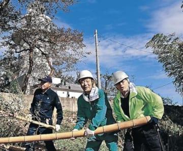 灯台の眺望復活に着手 高岡・岩崎ノ鼻で竹林伐採