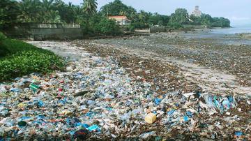 アフリカ・ギニアの海岸にたまった大量のプラスチックごみ=2017年9月(共同)