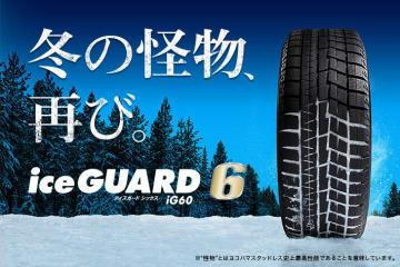 iceGUARD 6